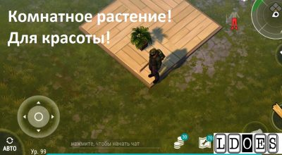 Комнатеное растение - Last Day on Earth Survival